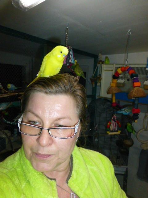 Hier gibt es sogar Vögel passend zum Outfit :-)