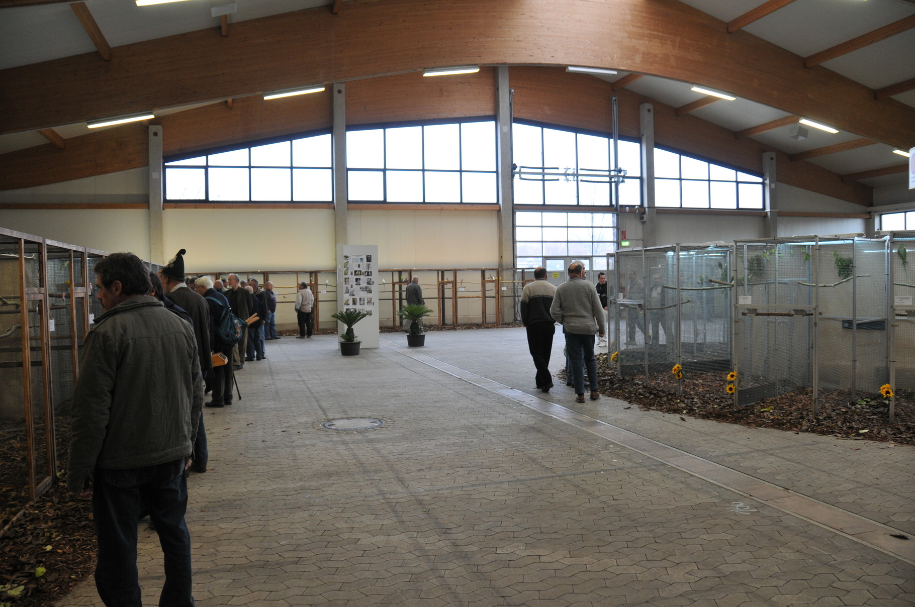 Bundesschau 2009  Sonderschau Edelsittiche