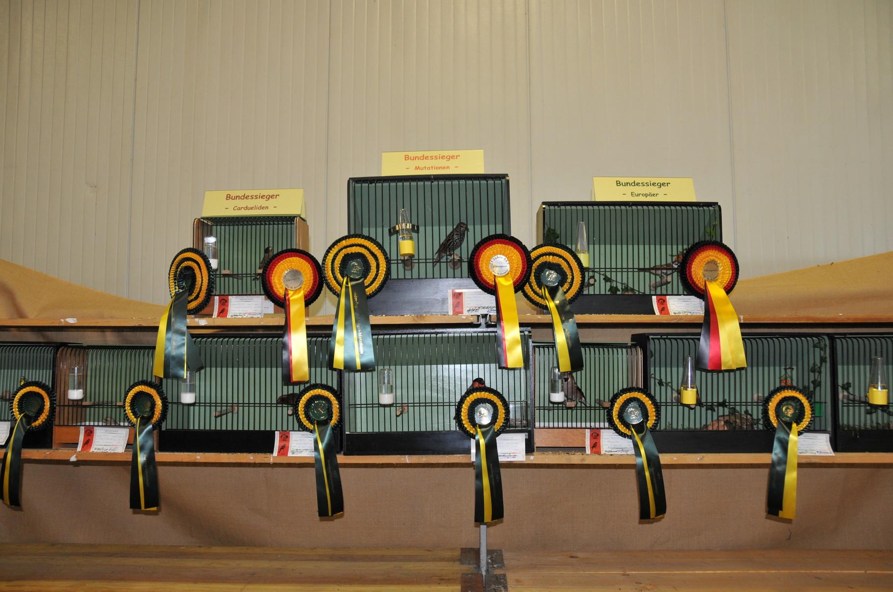 Bundesschau 2009  Weichfresser Siegervögel