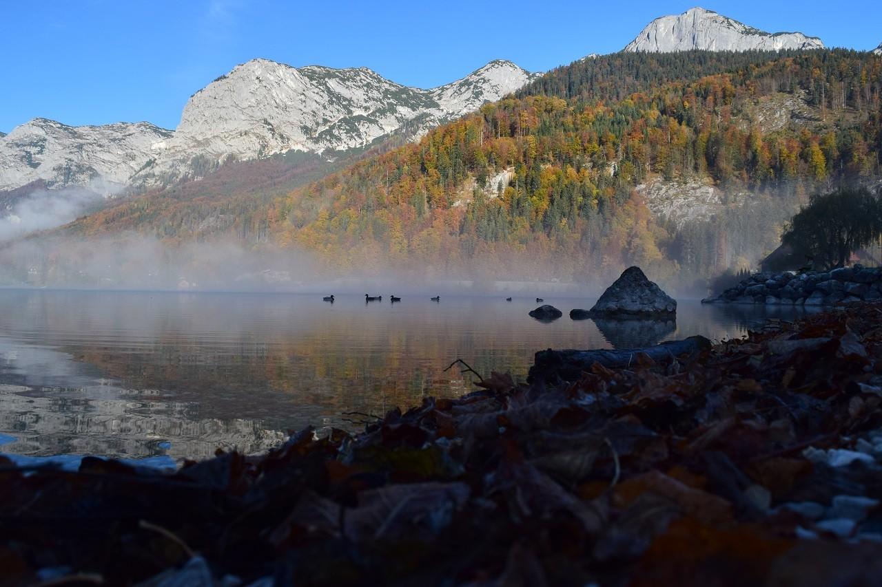 Uferbereich in Gössl