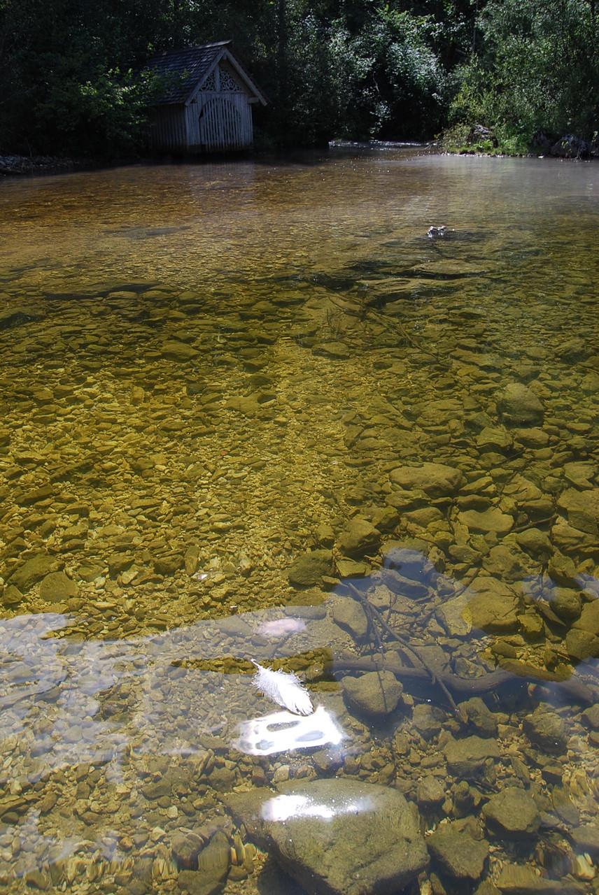 Mündungsbereich der Hirschbrunnquelle