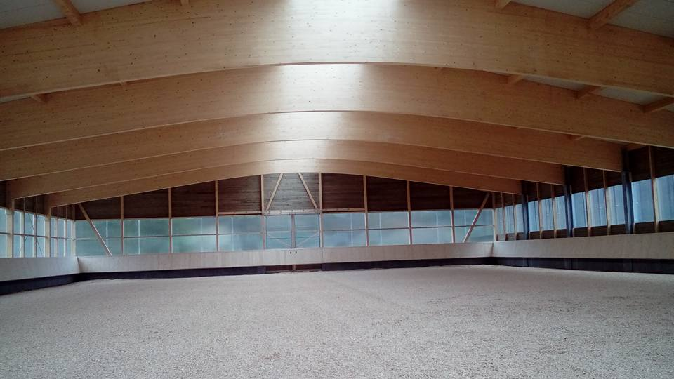 Halle 48x30
