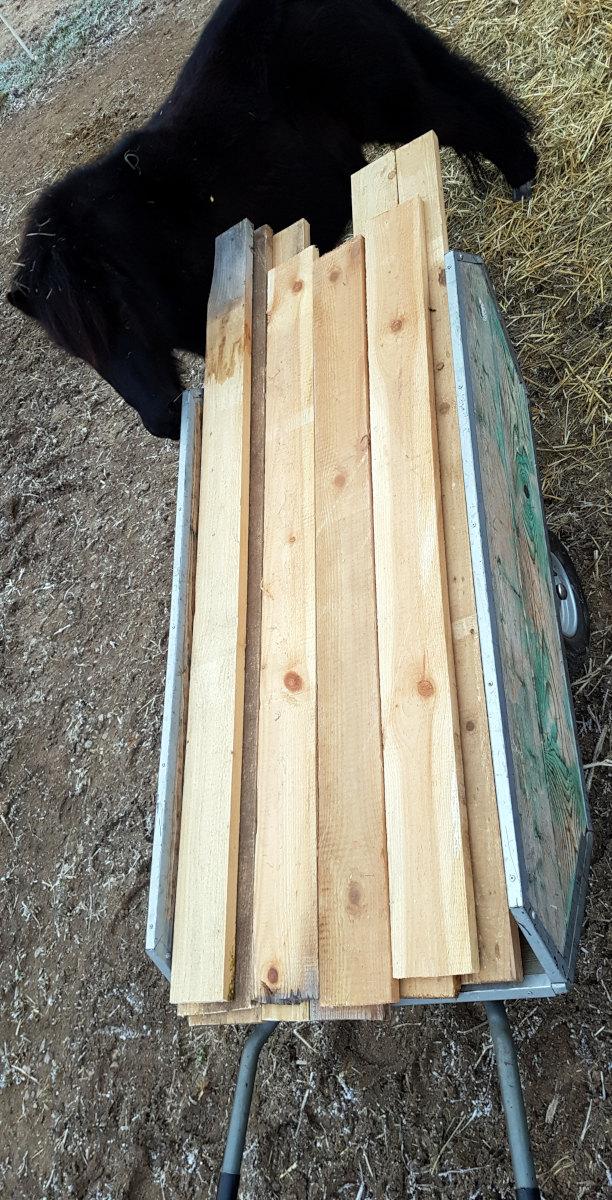 Die vorgeschnittenen Bretter mit einer Dicke von drei Zentimeter werden kritisch beäugt.