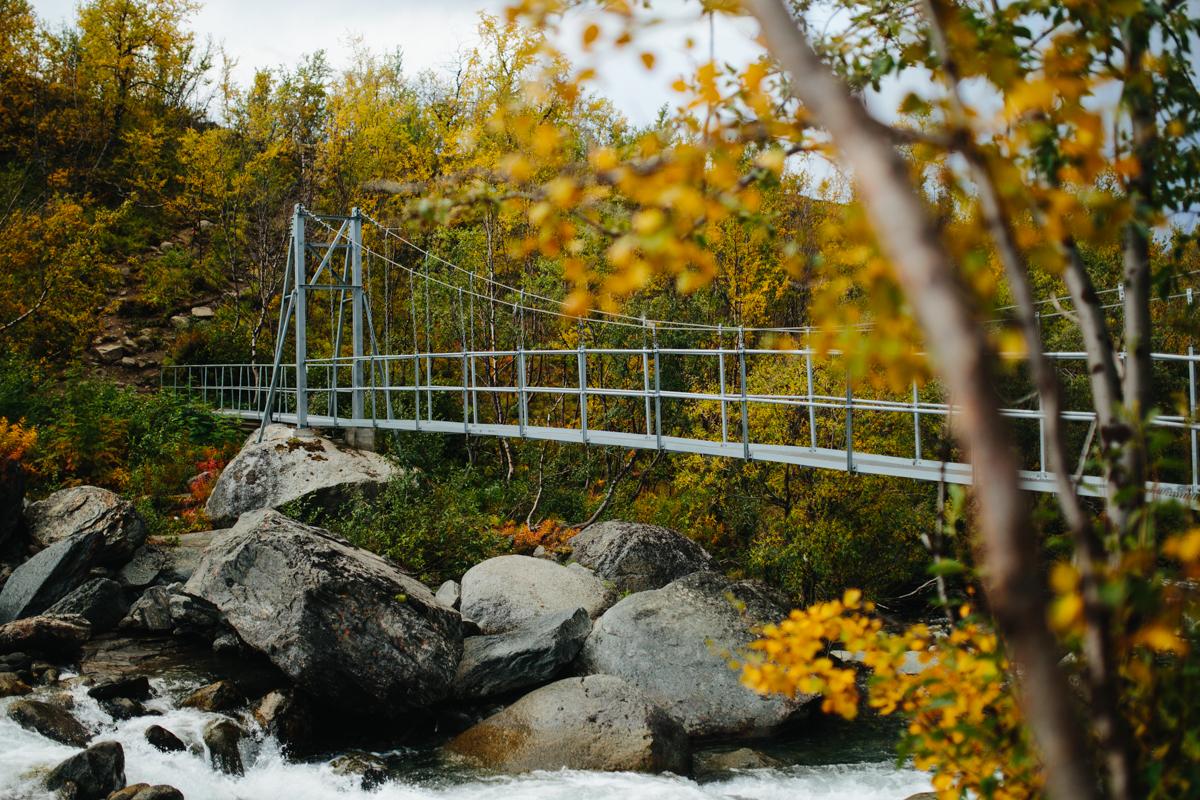 Immer wieder führen Brücken über reißende Flüsse