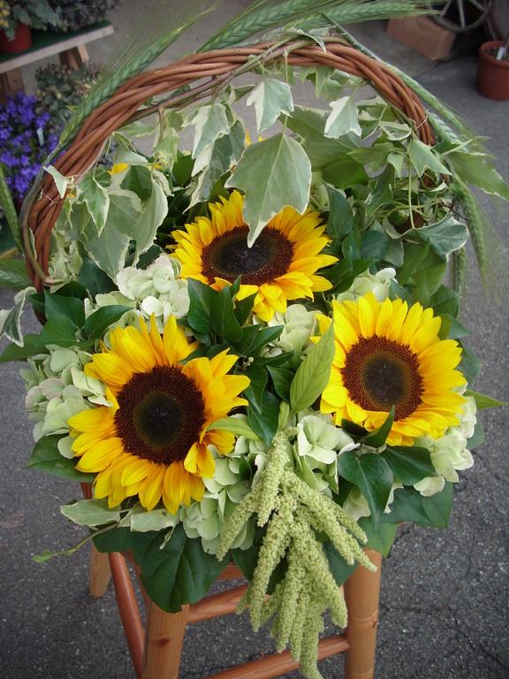 Sonnenblumenkorb ca.60Fr