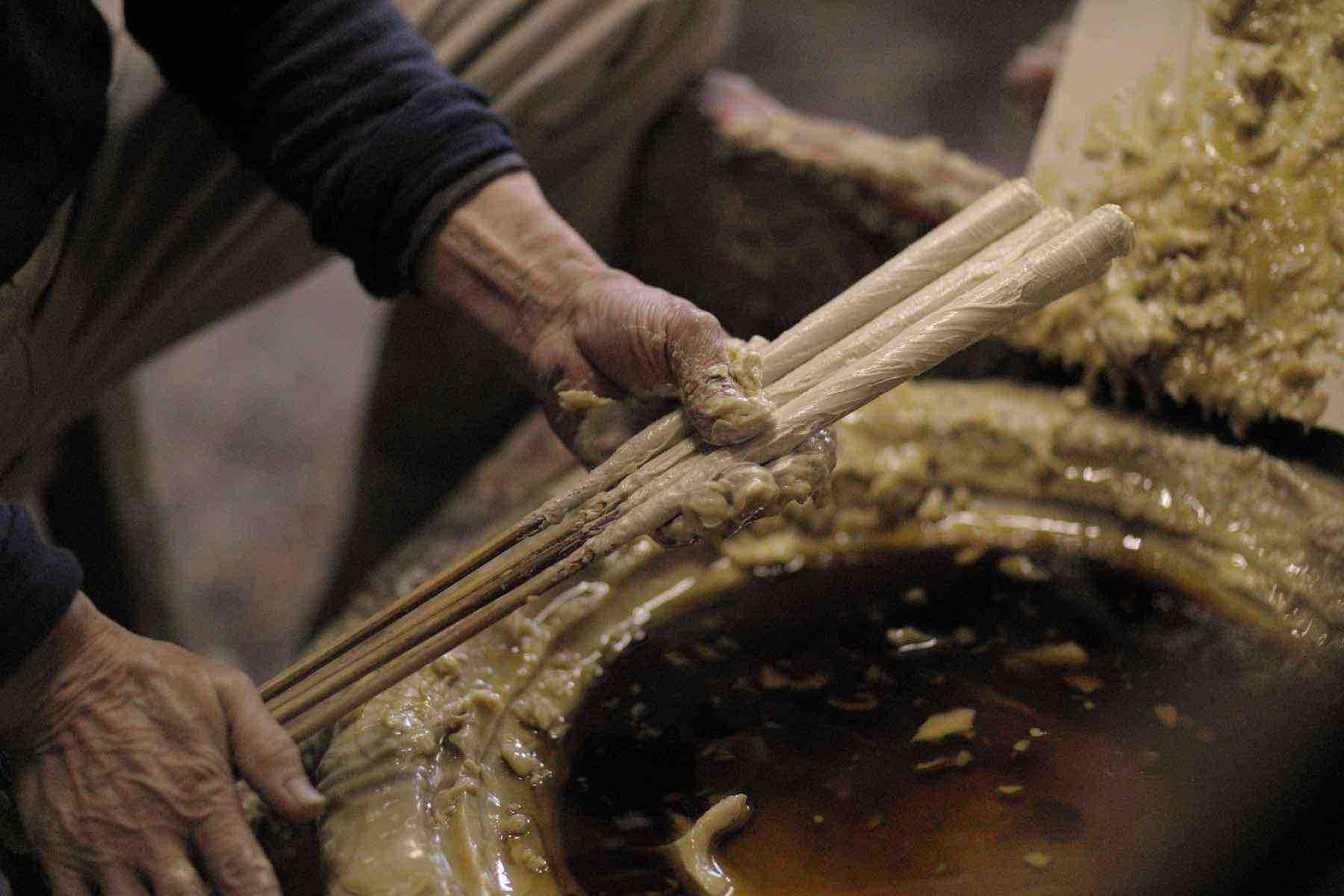 伝統の和ろうそくを作るハゼの木と木蝋紹介