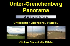 Webcam Grenchenberg click