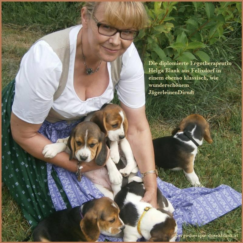 Helga Blank mit Beagle Welpen