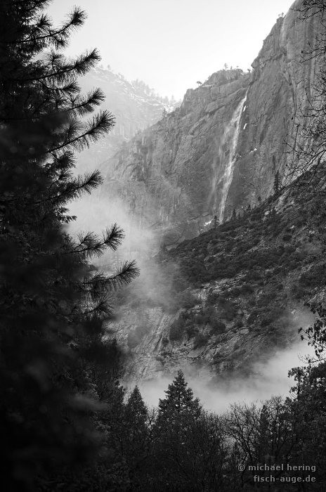 Lower Yosemite Falls / Yosemite NP California