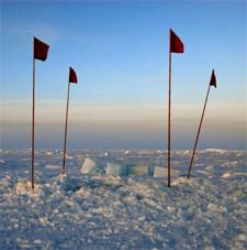 Lilo Tadday Antarktis Polar Stern Eis Stock Meereis Rot