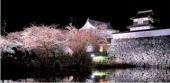 桜 福岡城