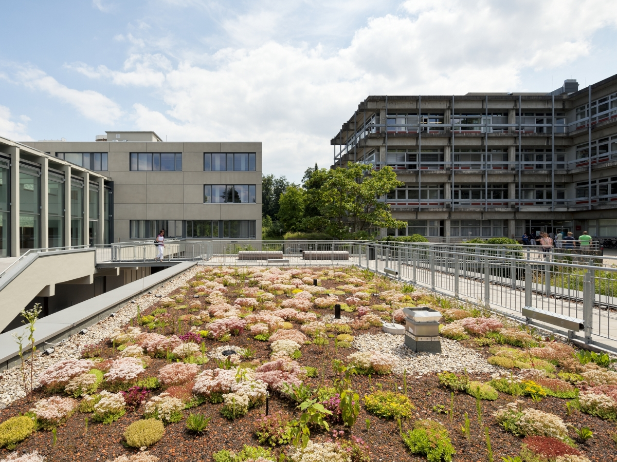 Technical University Darmstadt