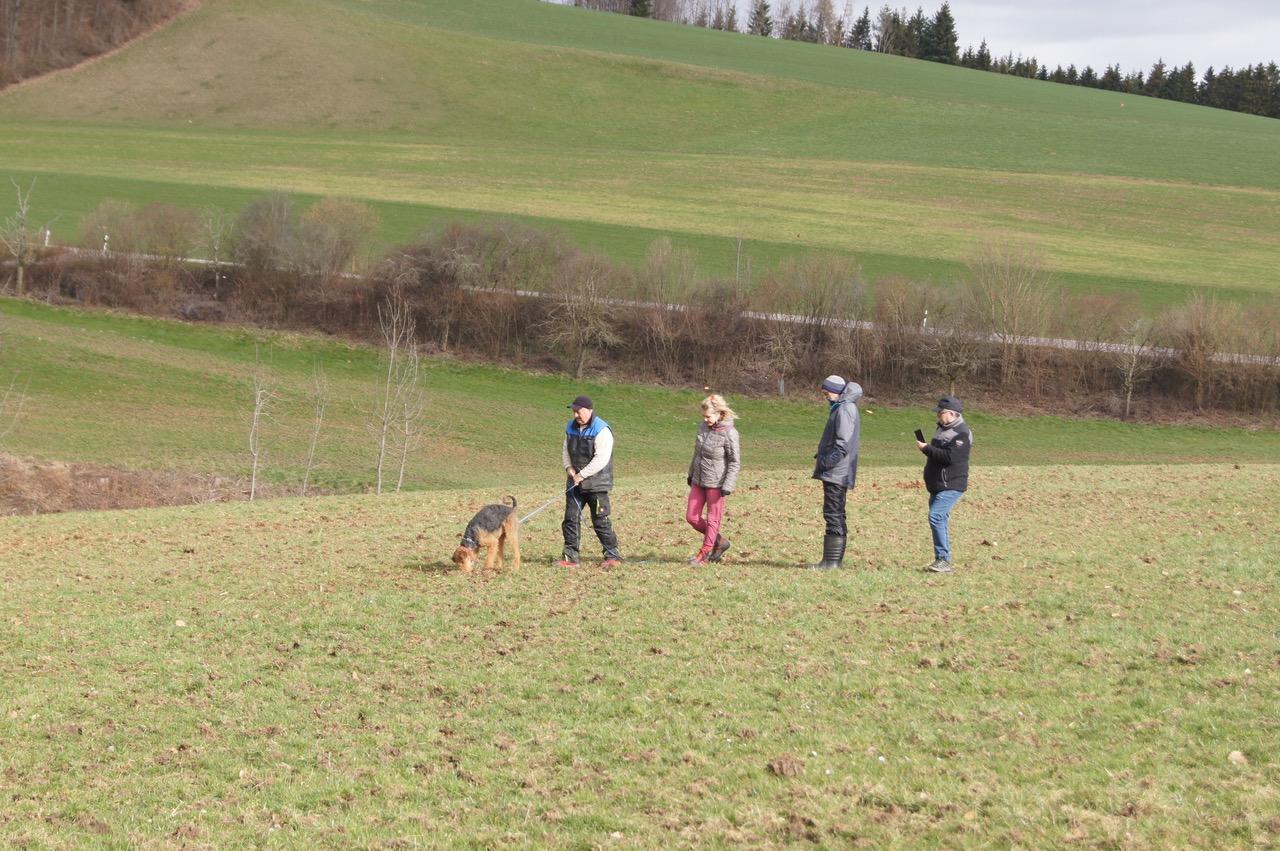 Alle folgen im Gänsemarsch dem Hund