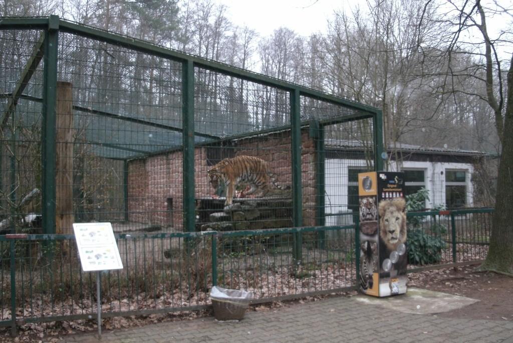 Zoo Kaiserslautern - Tierrechte vegan Abolitionismus
