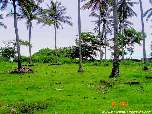 Land on offer for sale by owners direct. West Bali.