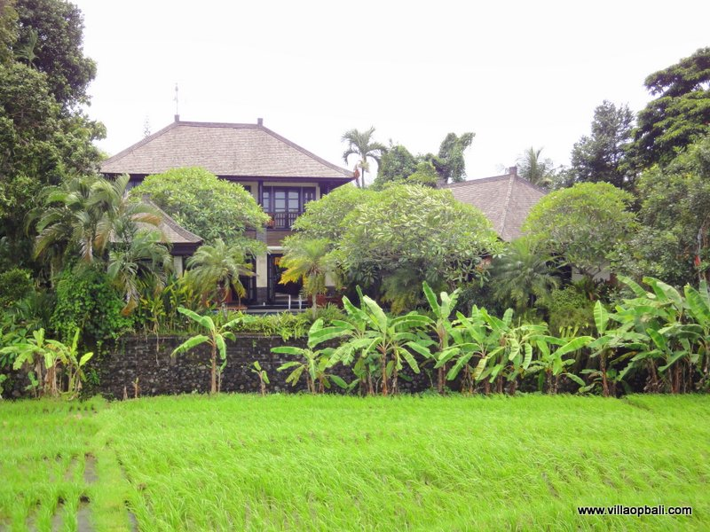 Freehold villa for sale located in Canggu. For sale by owner only.