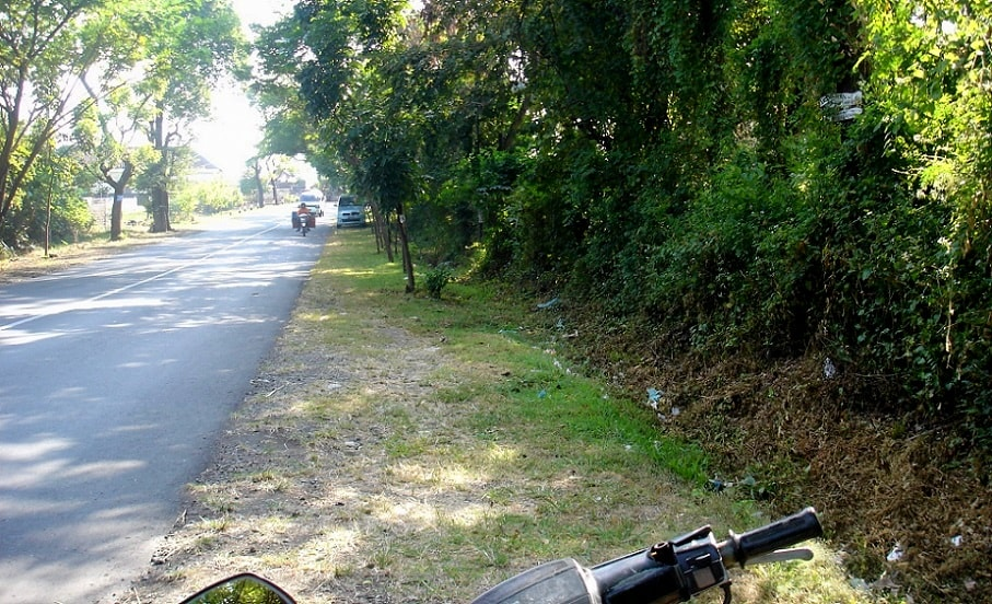 Land for sale by direct owner. North Bali land for sale near Pemuteran