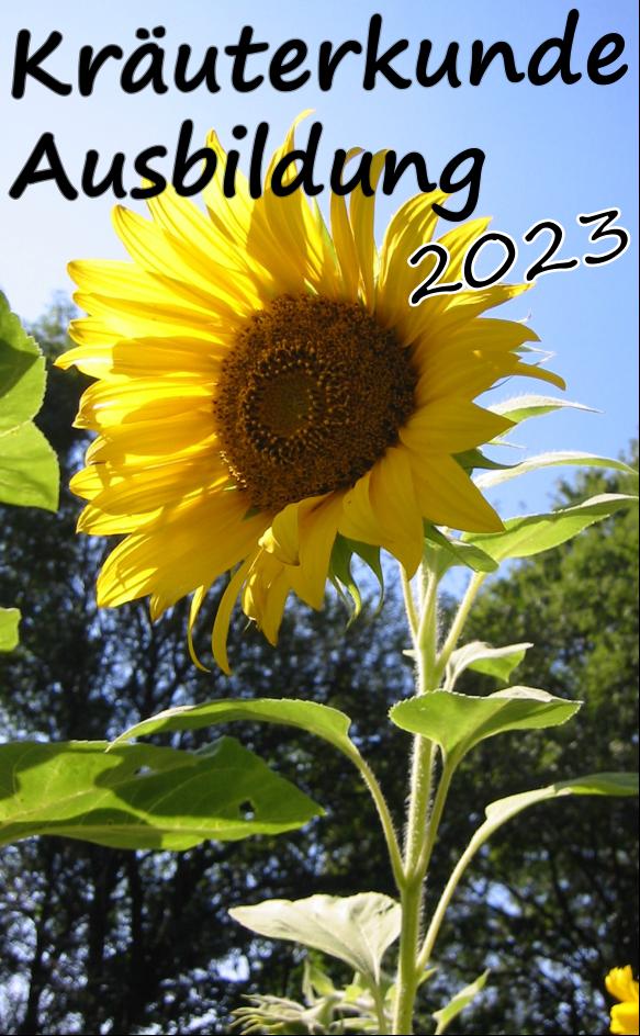 Kräuterkunde Kompaktkurse 2021 Hessen