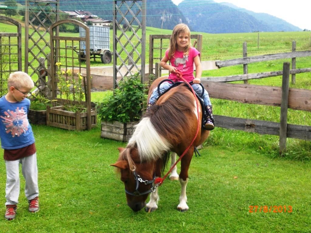 Ponybesuch vom Nachbar Bauernhof