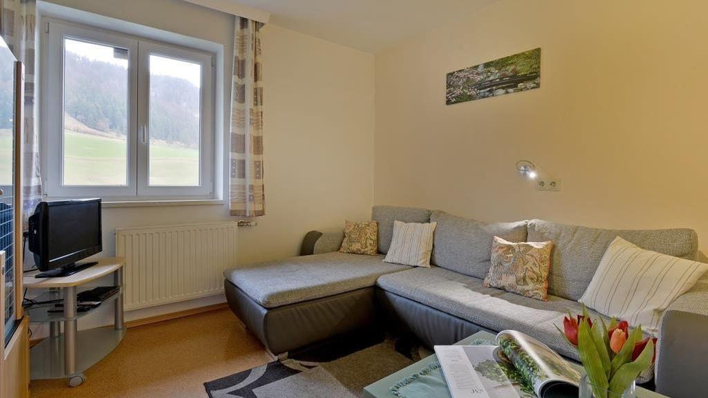 Wohnzimmer mit Schlafcoach / TV und Blick auf den Miesberg