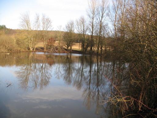 """Der """"Seewasen""""-Tümpel an Weihnachten 2012. Eine so große Wasserfläche hatte er lang nicht mehr."""