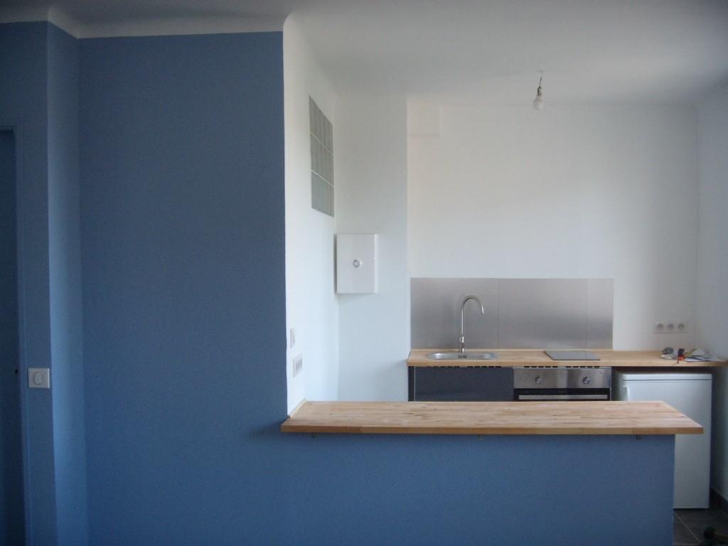 peinture 2 tons bleu et blanc mat