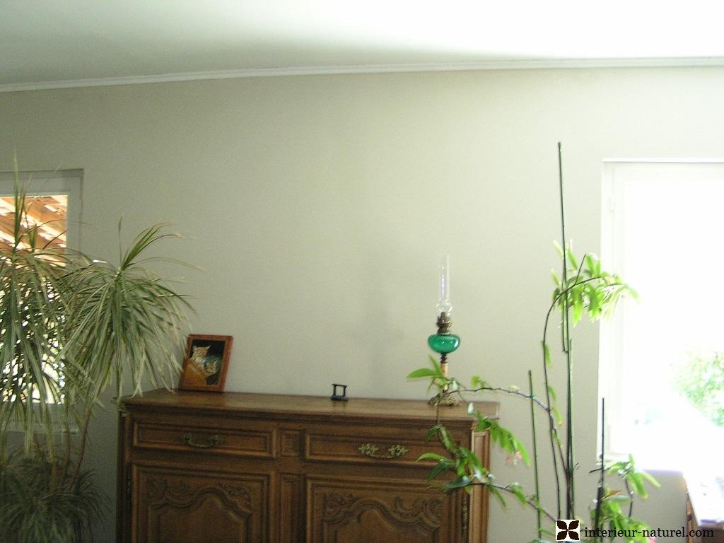 Peintures naturelles cologiques min rales et badigeon - Peinture sans enduit ...