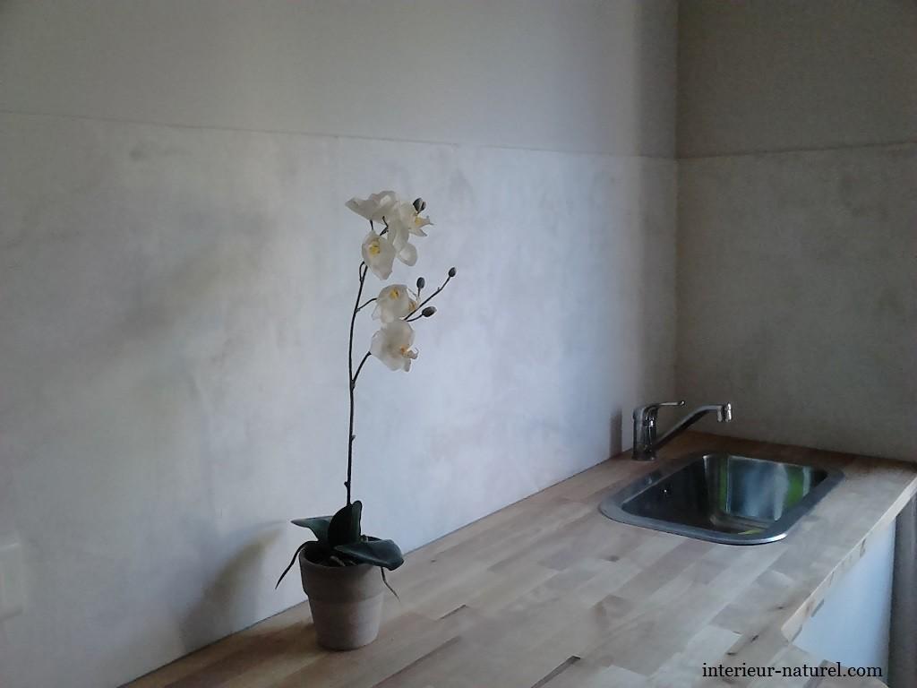 peintre d corateur herault gard peinture cologique argile chaux. Black Bedroom Furniture Sets. Home Design Ideas