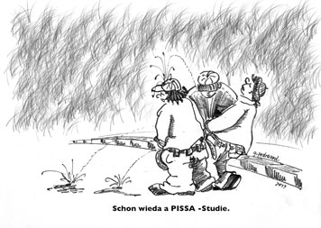 Schon wieda a PISSA-Studie.  Bild von Gernot Pedrazzoli