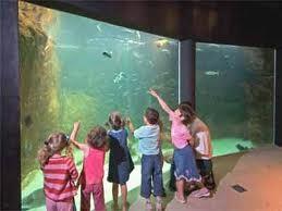 Aquarium marin - Trégastel - 18 km