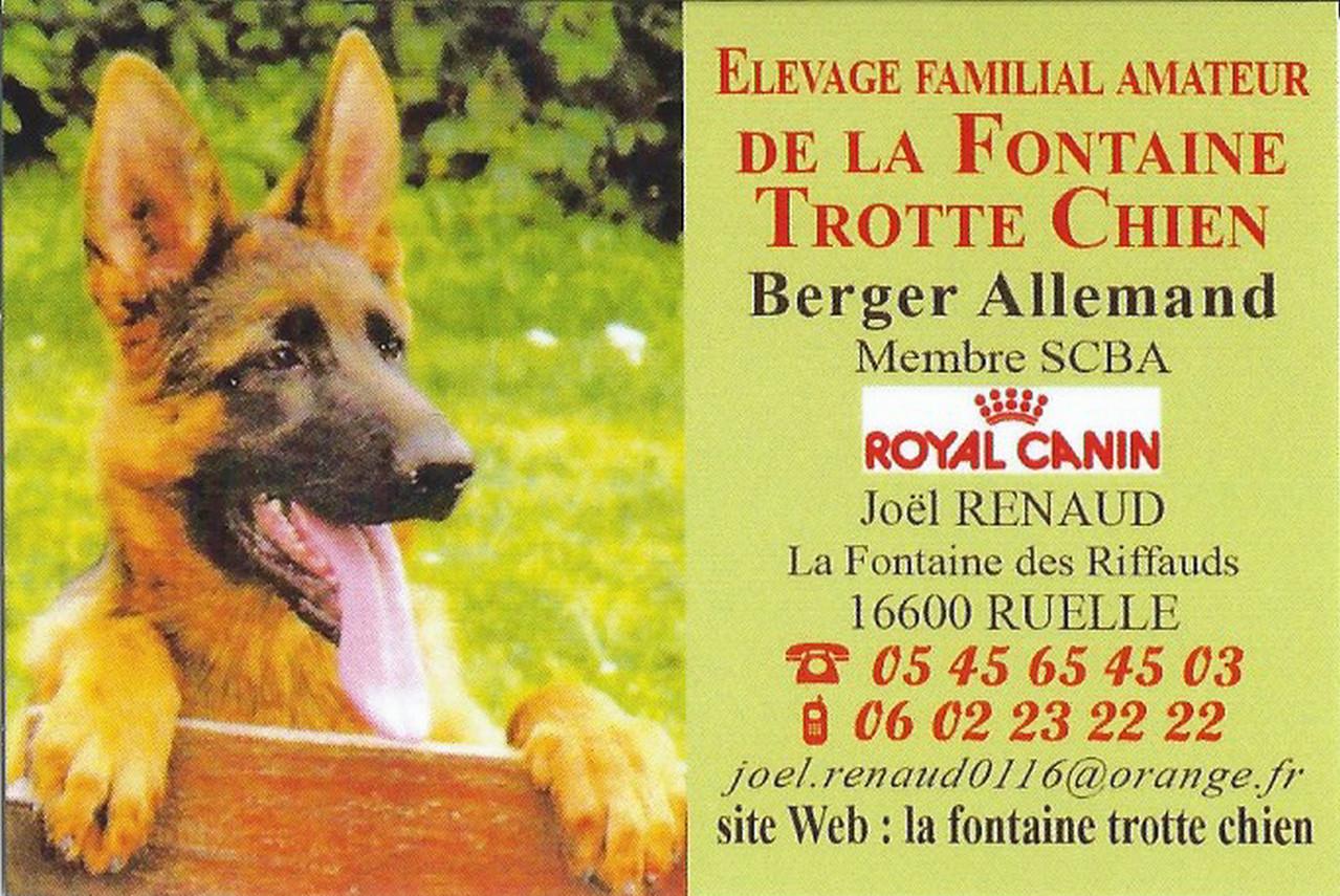 Plan du site - LA FONTAINE TROTTE CHIEN. BERGER ALLEMAND