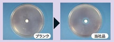黄色ブドウ球菌の抗菌試験結果