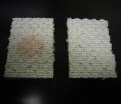 土足カーペットの掃除方法【予防清掃の仕方】