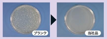 大腸菌の除菌試験結果