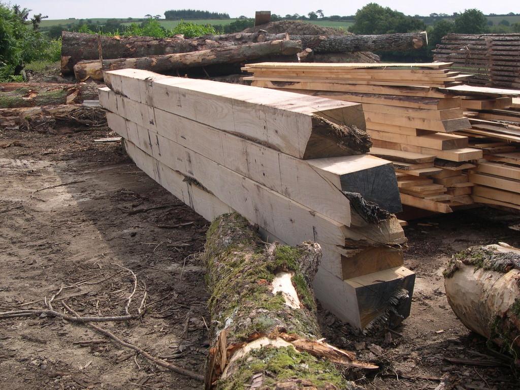 Poutres en chêne de forte section pour l'empoutrement d'une maison