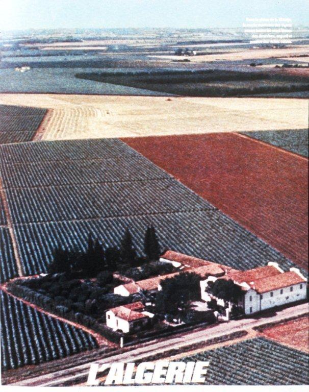 Très grande ferme Coloniale dans la riche plaine de la Mitidja (Algérois)