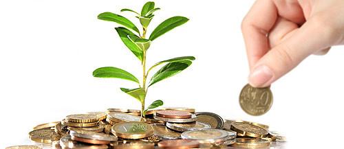 Geld vom Staat: Unsere Seminare und Kurse werden gefördert