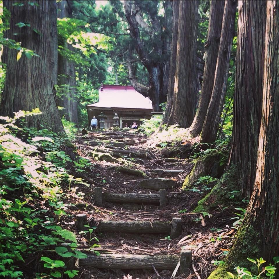朝のお散歩 温泉神社