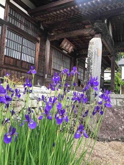 【お知らせ】5月16日 禅とYOGAと和菓子 二本松市 龍泉寺