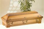 transporti kufomave, sa kushton transporti i kufomave, transporti i kufomave nga austria, transporti i kufomave nga gjermania, transporti i kufomave prishtine, transporti i kufomave, transport i kufomave zvicer, transport i kufomave, transport kufomave, b