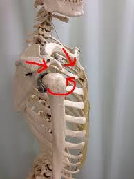 巻き肩の歪み