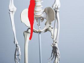脊柱管狭窄症で手術を言われた男性