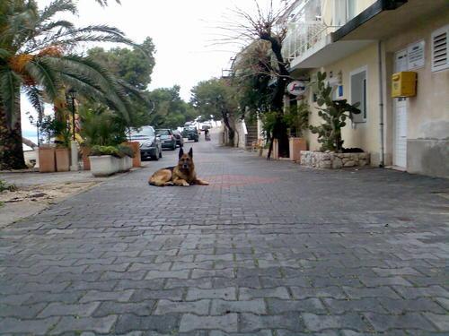 Апартаменты Братуш (Bratuš) Хорватия