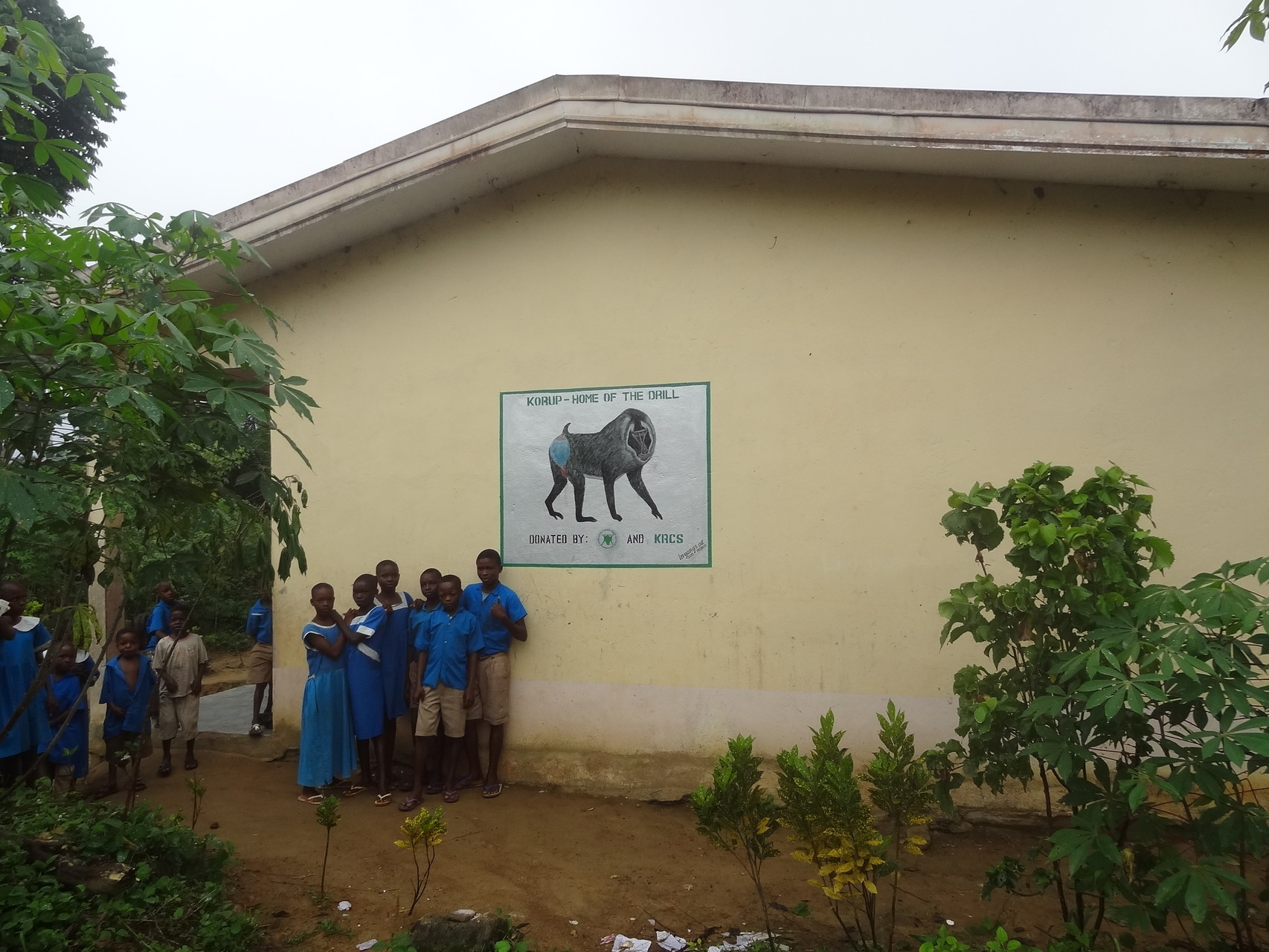 Conservation sign at primary school in Mundemba