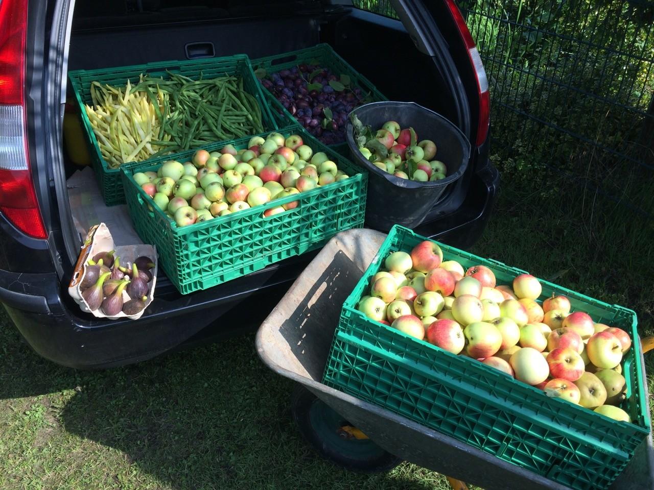Eine Lieferung unserer Äpfel bei der Bremer Tafel