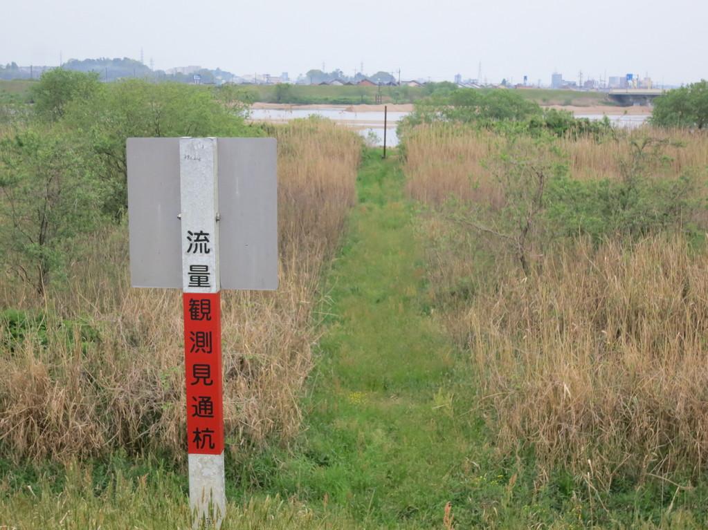 川の水位を測る杭