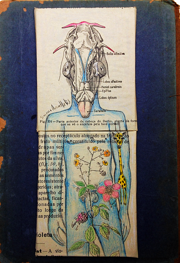 Fixe man, a new generation of my miniatures. Pencil color on old book pages. Size 21,5X15 cm. Available original!
