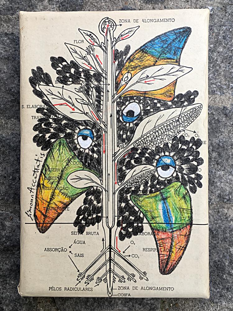 Tukany, original, pencil colour, size 15x10cm