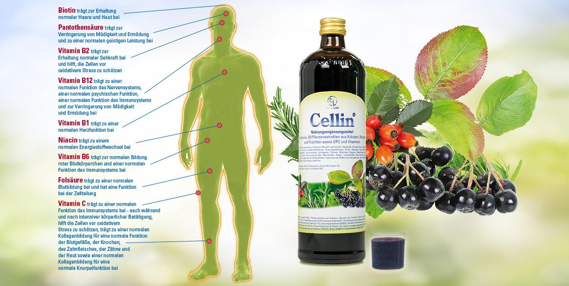 Produkte von Energy Life - Naturheilpraxis und Yogaschule Voglreiter