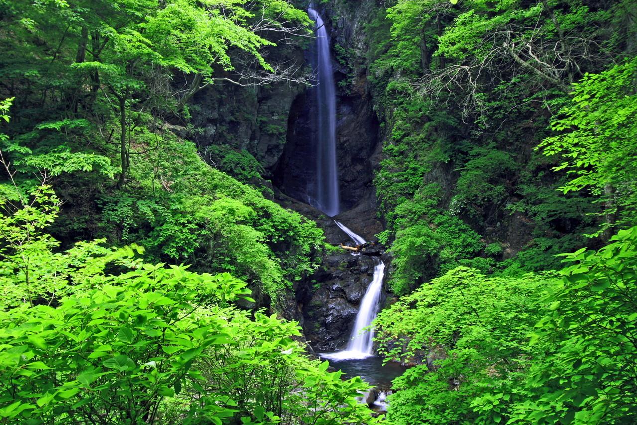 富士川町・銚子口二段の滝